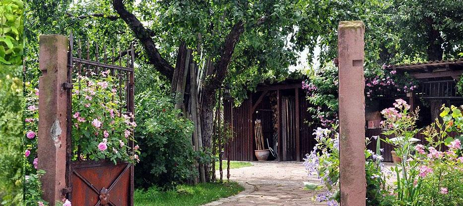 """Der Eingang in unseren """"alten"""" Garten von der Rückseite."""