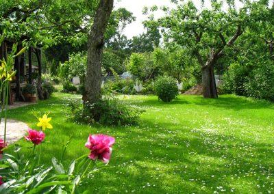 Tag der offenen Gartentür