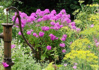 HerbaLicca Garten