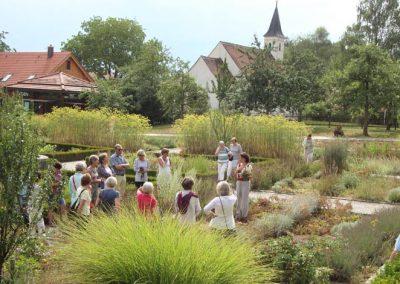"""Führung """"Sonnwendkräuter im Kerschlacher Klostergarten"""""""