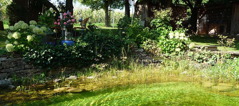 Gartenerlebnis-Bayern-Hausgarten-Buechold-Anneliese-Max-Schwimmteich