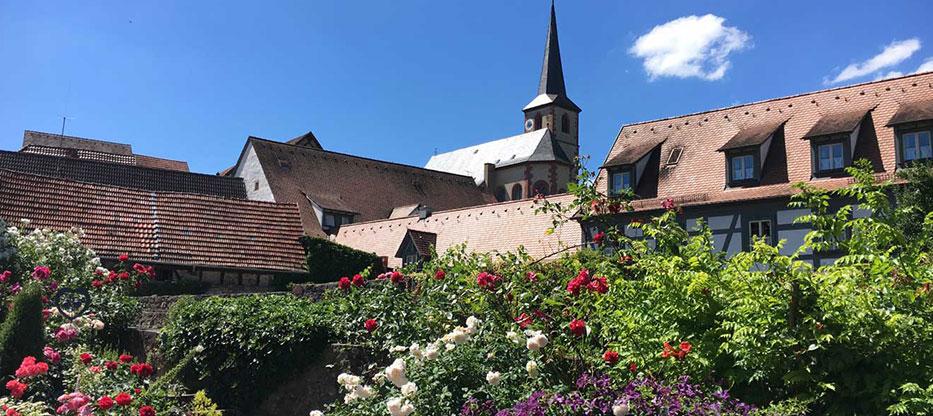 Gartenerlebnis-Bayern-Ulrike-Faust-Clematisdorf-Erlabrunn-Event-Oeffentliche-Fuehrung-5