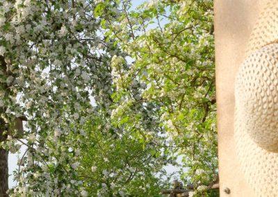 Gartenträume im Landkreis Haßberge