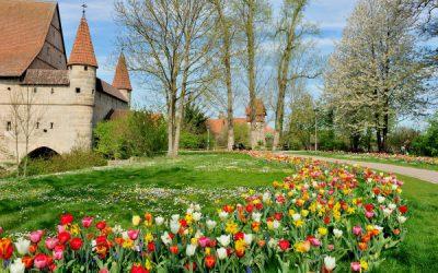 Exkursionstag der Deutschen Dendrologischen Gesellschaft mit Gartenführung