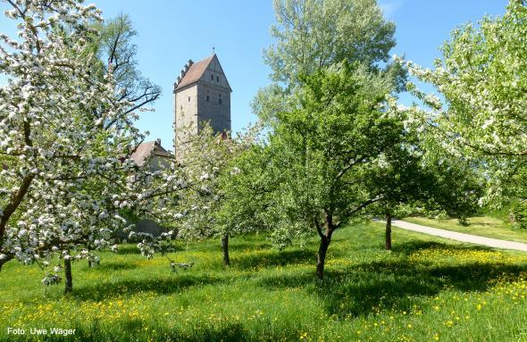 Die Leserreisen-Serie der Nürnbergern Nachrichten: Besondere Gärten Bayerns