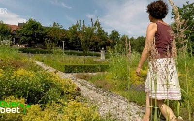 Querbeet dreht Video mit Christine Stedele: Unterwegs mit der Gartenbäuerin im Kräutergarten Gut Kerschlach