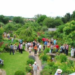 Tag der offenen Gartentür mit Gartenmarkt in Himmelstadt und im Landgarten Himmelstadt