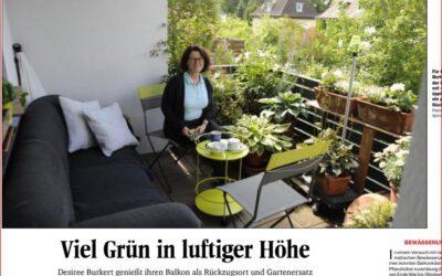 Eigener grüner Balkon – Rückzugsort nicht nur in Zeiten von Corona